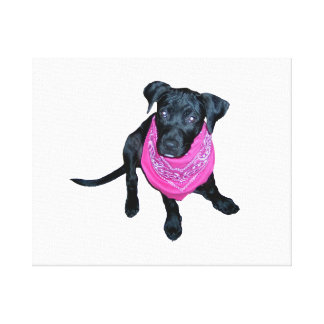 Black Lab Pink Bandana Puppy image Gallery Wrapped Canvas