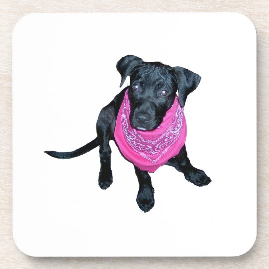 Black Lab Pink Bandana Puppy image Coaster