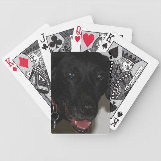 Black Lab Playing Cards