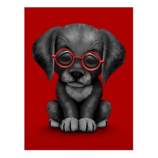 Black Lab Puppy Dog With Reading Glasses, red Postcard