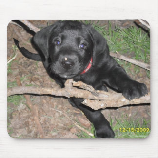 Black lab puppy mouse pad
