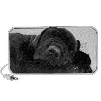 Black Lab Puppy Portable Speakers