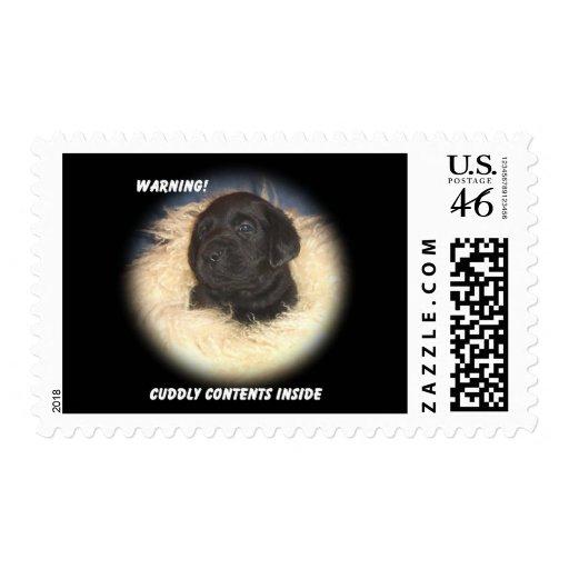 Black Lab Puppy Postage Stamp