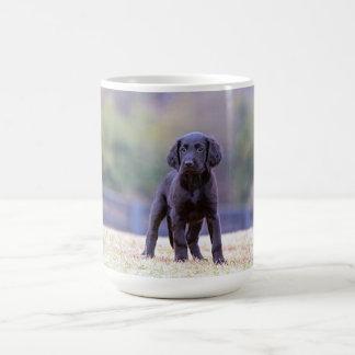 Black Lab Puppy Standing Coffee Mug