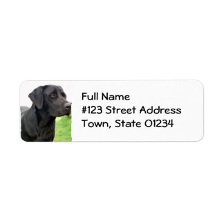 Black Lab Return Address Label