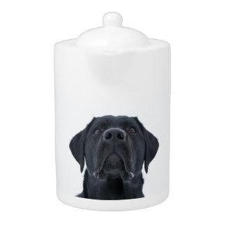 Black lab teapot, cuddly gorgeous dog teapot