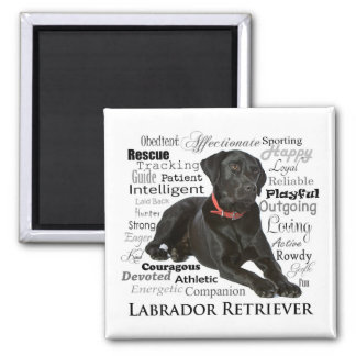 Black Lab Traits Magnet