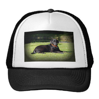 Black Lab Trucker Hat