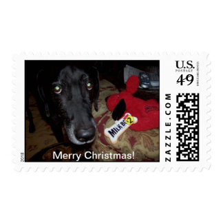 Black lab /xmas gift postage stamps