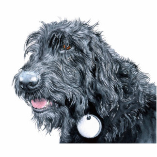 Black Labradoodle Scupture Standing Photo Sculpture