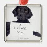 Black Labrador 13 Months Christmas Tree Ornament