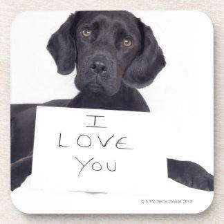 Black Labrador 13 Months Coaster