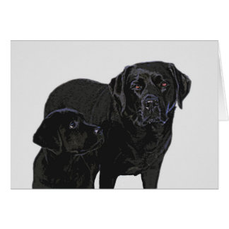 Black Labrador - Admiration in Puppy's Eye's Card