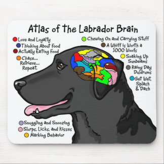 Black Labrador Brain Atlas Mouse Pad
