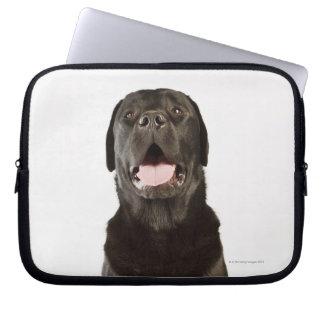 Black Labrador (Canis familiaris), panting, Computer Sleeve