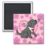 Black Labrador Cherry Blossoms Fridge Magnets