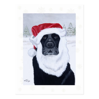Black Labrador Christmas Santa Hat Painting Post Card