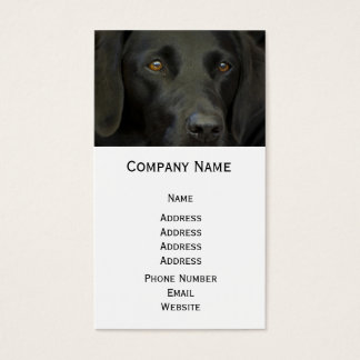 Black Labrador Dog Business Card