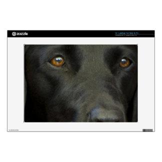 """Black Labrador Dog Decals For 13"""" Laptops"""