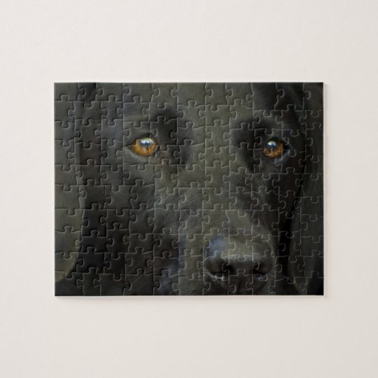 Black Labrador Dog Jigsaw Puzzle