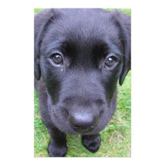 "Black Labrador Dog on Grass 5.5"" X 8.5"" Flyer"