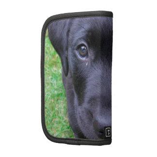 Black Labrador Dog on Grass Organizer