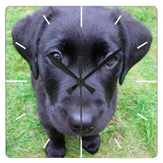 Black Labrador Dog on Grass Square Wall Clock