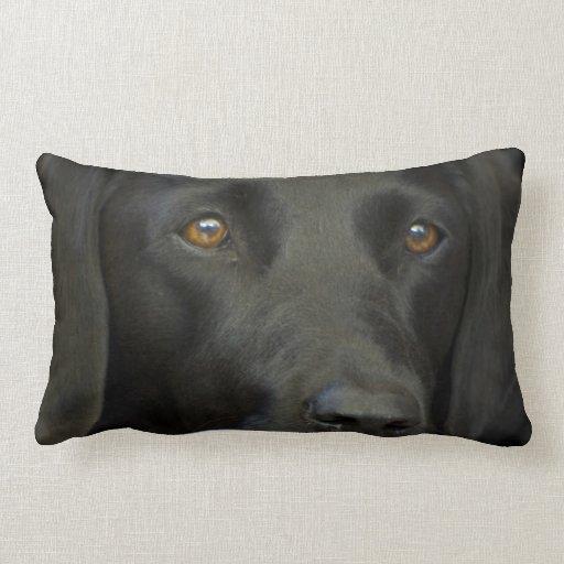 Black Labrador Dog Pillows
