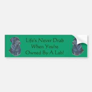 black labrador dog portrait art slogan design bumper sticker