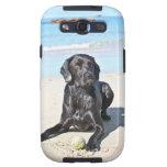 Black Labrador Dog sitting on the Beach Samsung Galaxy SIII Case