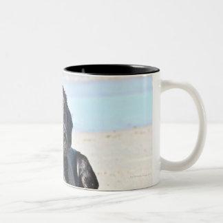 Black Labrador Dog sitting on the Beach Two-Tone Coffee Mug