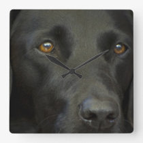 Black Labrador Dog Square Wall Clocks
