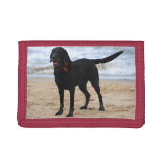 Black Labrador Dog Trifold Wallet