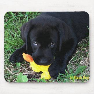 Black Labrador Duck Puppy 1 Mouse Pad