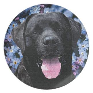 Black Labrador - Forget Me Not Plate