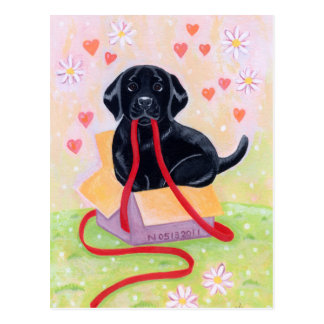 Black Labrador in the box Painting Post Card