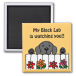 Black Labrador is watching you Magnet