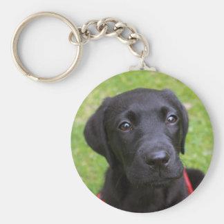 Black Labrador Key Ring Key Chains