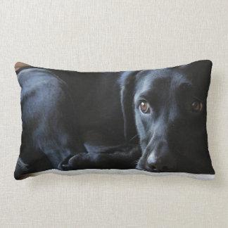 Black Labrador Lumbar Pillow