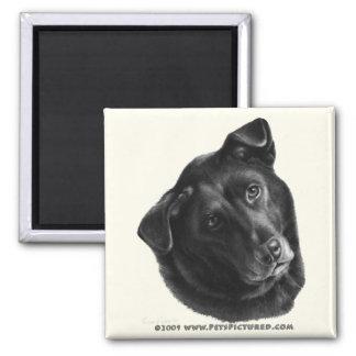 Black Labrador Mix 2 Inch Square Magnet