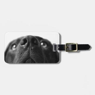 Black Labrador nose up close Luggage Tags