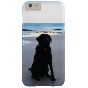 Black Labrador on a beach Barely There iPhone 6 Plus Case