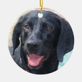 Black Labrador ornament