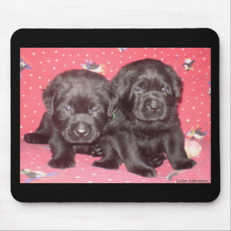 Black Labrador Puppies Magnet Mouse Pad