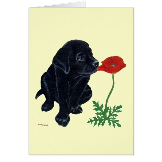 Black Labrador Puppy Card