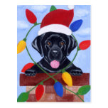 Black Labrador Puppy Christmas Post Card