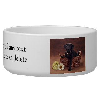 Black Labrador Puppy Dog Bowl