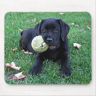 Black Labrador Puppy - Play Ball Mouse Pad