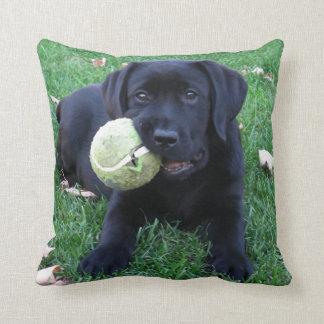 Black Labrador Puppy - Play Ball Throw Pillow
