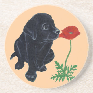 Black Labrador Puppy & Poppy Painting Coaster